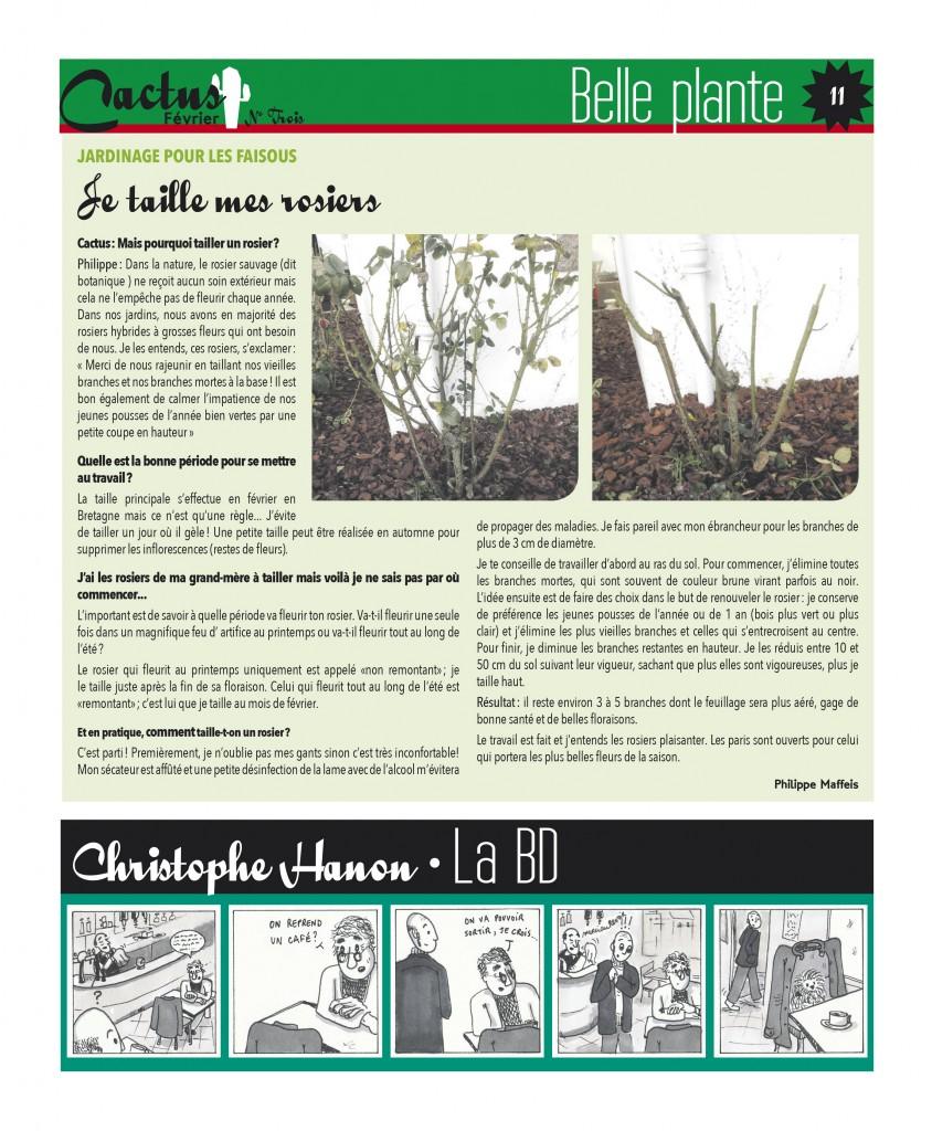 http://www.cactus-paysderedon.fr/wp-content/uploads/2016/02/Cactus_3_Fevrier_11-copie-844x1024.jpg