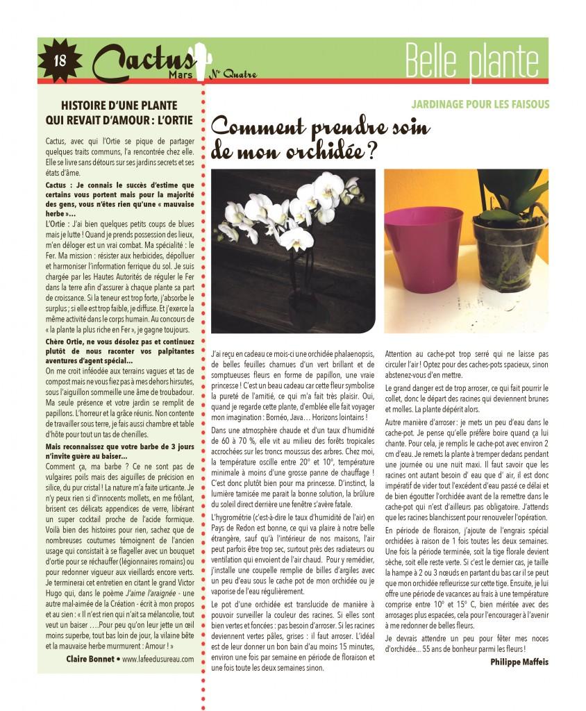 http://www.cactus-paysderedon.fr/wp-content/uploads/2016/02/Cactus_4_Mars_18-copie-844x1024.jpg