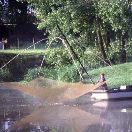 Parties de pêche