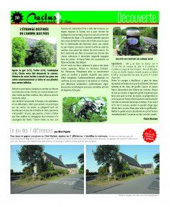 http://www.cactus-paysderedon.fr/wp-content/uploads/2017/06/Cactus16_Juillet-Aout_P30-copie-247x300.jpg
