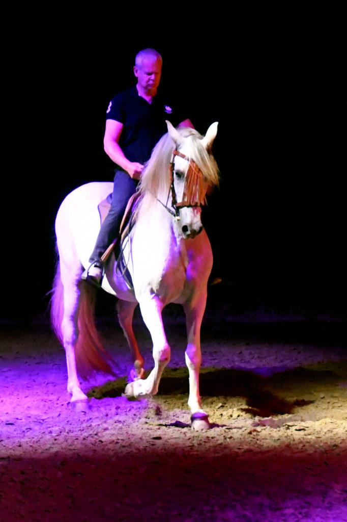 Théâtre Equestre de Bretagne : Au-delà des ornières
