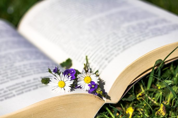 """Balade lecture """"Vert le futur"""" @ Bains-sur-Oust"""