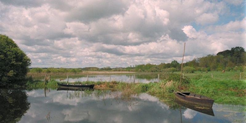 Découverte nature du Marais de Gannedel