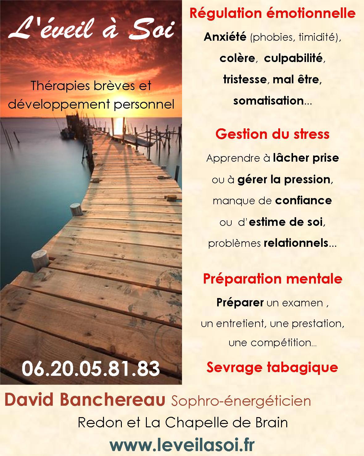Encart-David-Banchereau-35