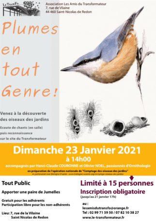 Reconnaissance et observation des oiseaux des jardins @ Le Transformateur