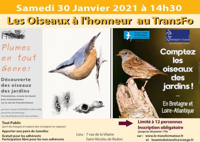 Les Oiseaux à l'honneur au TransFo @ Le Transformateur