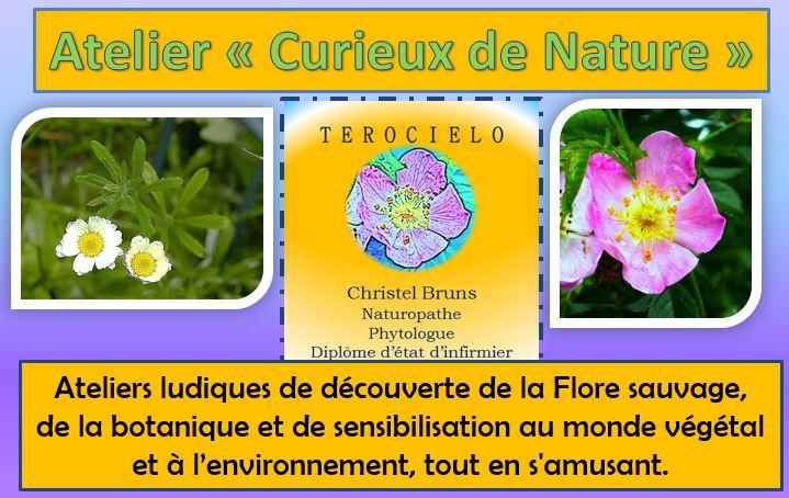 """Ateliers """"Curieux de nature"""""""