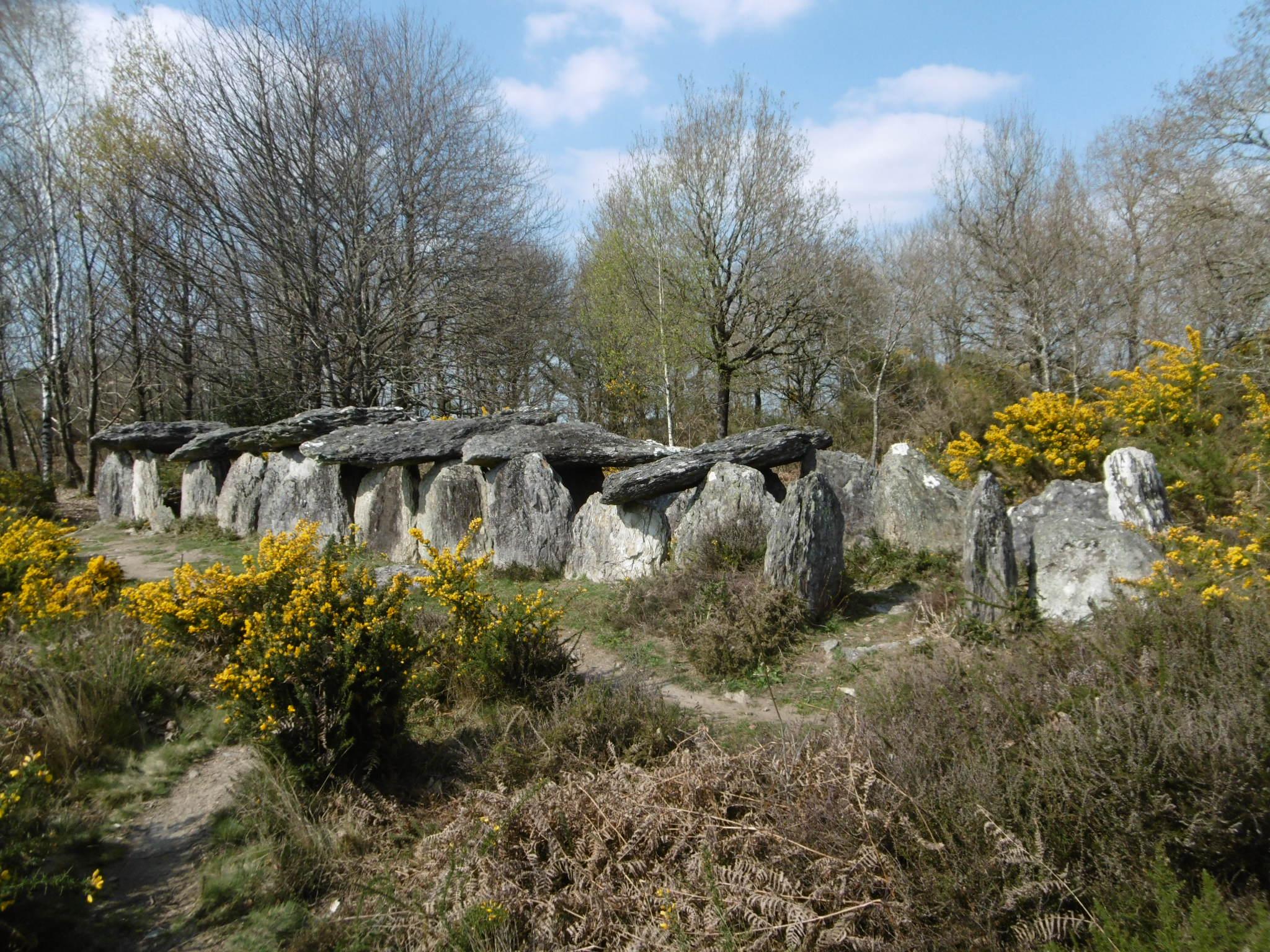Journées de l'Archéologie, visite