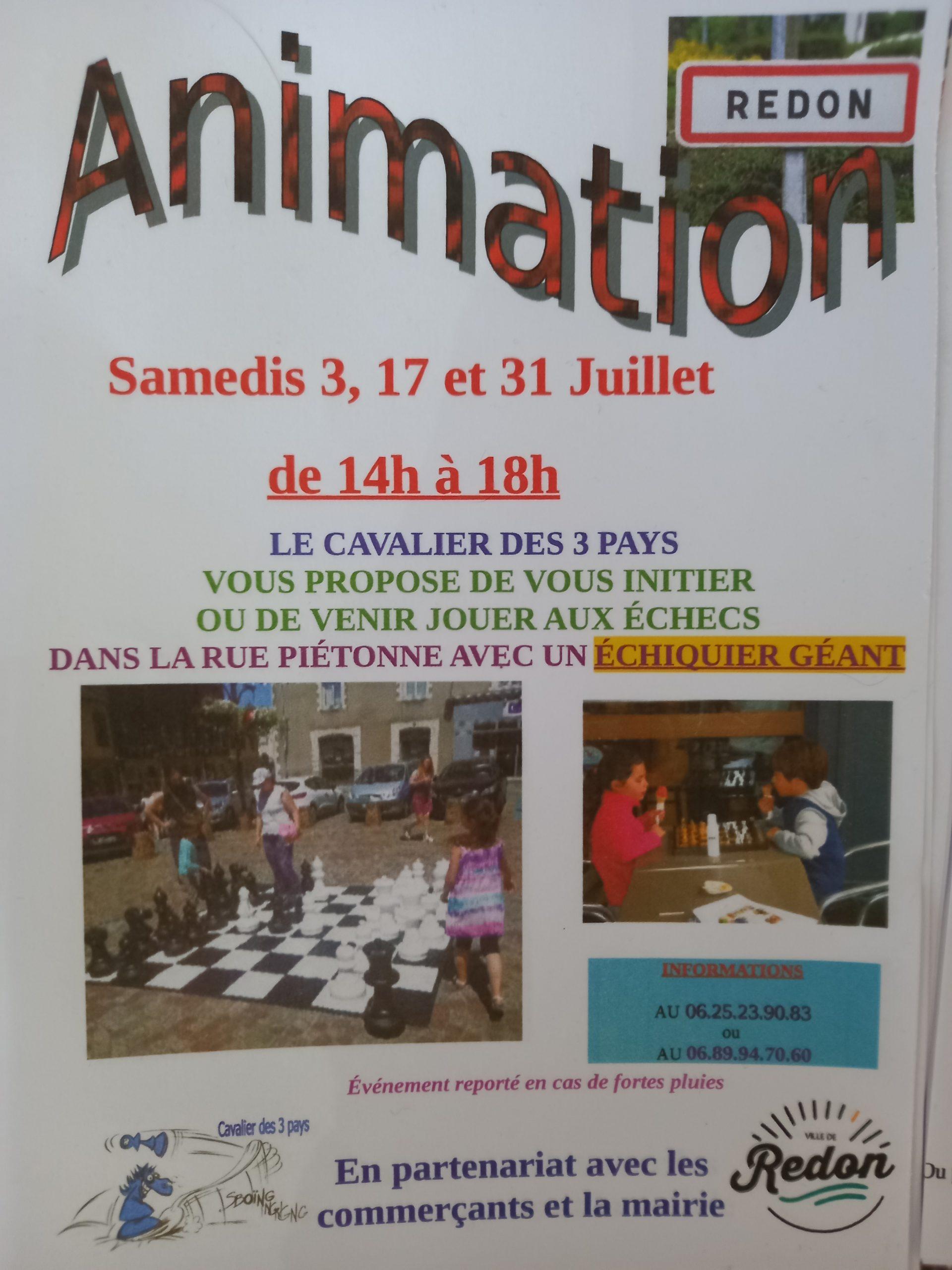 Animations échecs