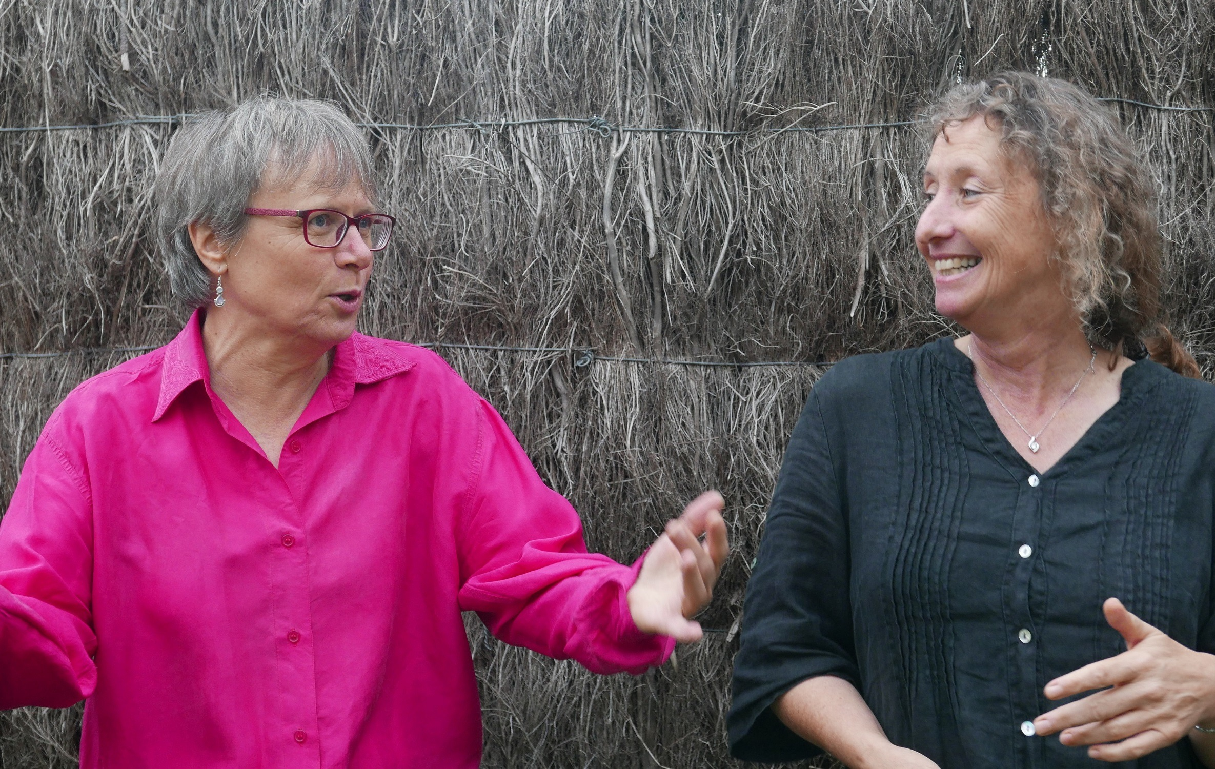 Françoise & Agnès, duo de chants trad'