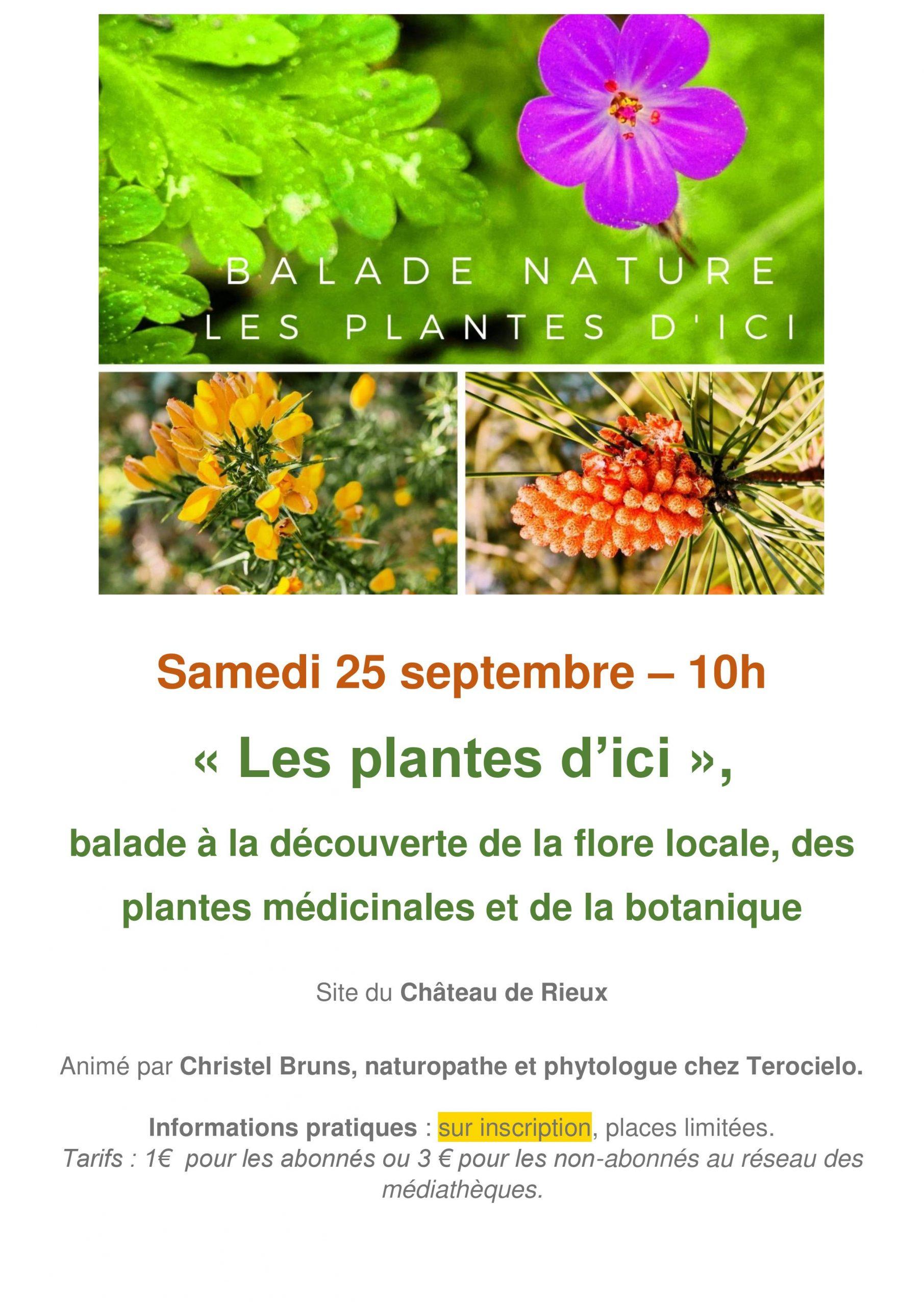 "Balade ""Les plantes d'ici"""