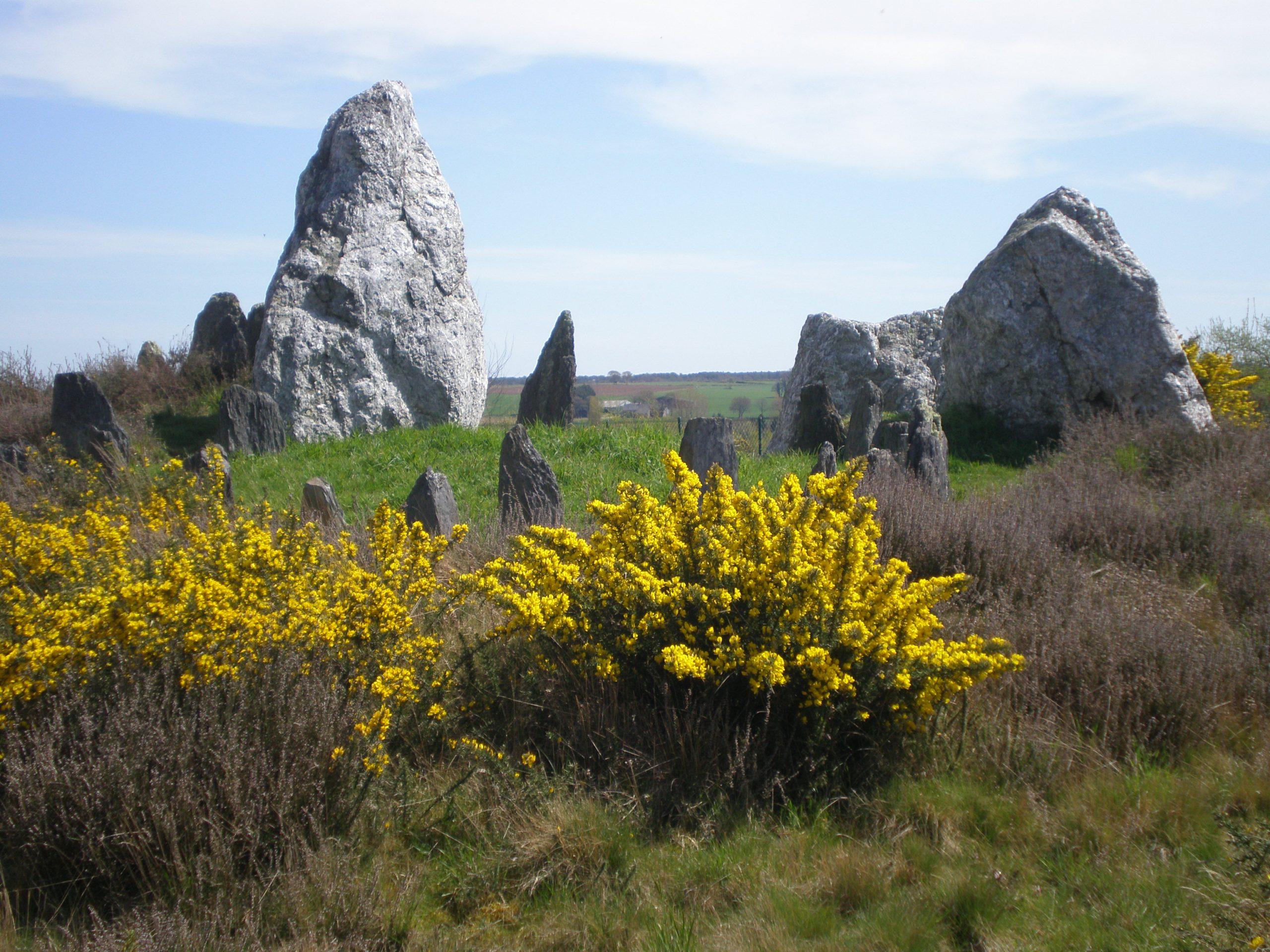 Fête de la Science : Visite découverte du Dolmen du Château de Bu